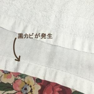 黒カビが発生したガーゼのタオル